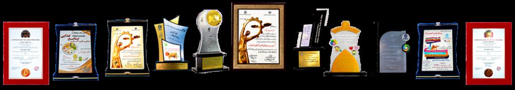 افتخارات و دستاوردهای شرکت پژواک
